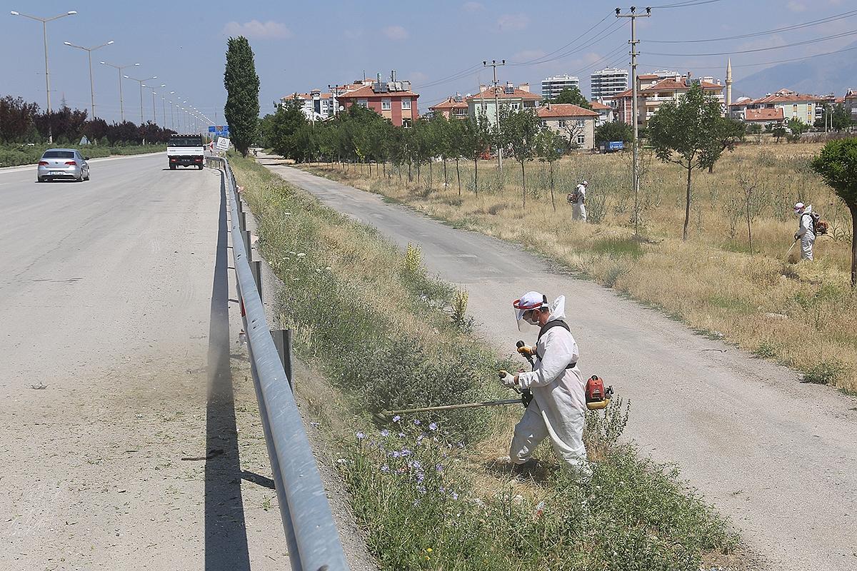 Karaman'da Yabani Otlar Temizleniyor